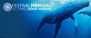 Inscription au Festival de l'image sous-marine de Mayotte