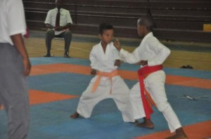 Le championnat de Mayotte de karaté approche