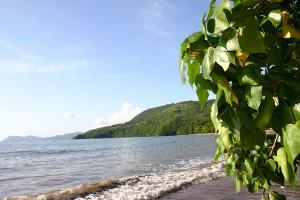 Découverte d'un corps sans vie sur la plage de Koungou