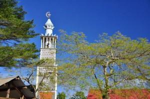 La mosquée de Tsingoni appelle au combat