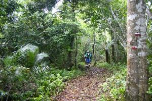 La ville de Pamandzi organise une randonnée découverte