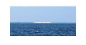 Projet d'événement sur l'îlot de sable blanc