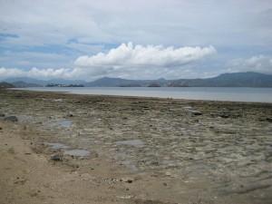 Mayotte a sa première banque d'images en ligne