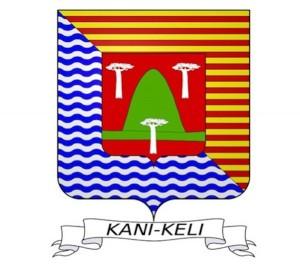Initiation aux gestes de 1ers secours à Passi-Kéli