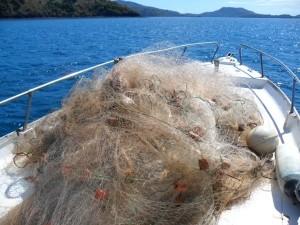 Arrêté réglementant l'exercice de la pêche