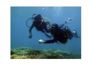Bilan positif pour l'opération «premières bulles au pays du corail»