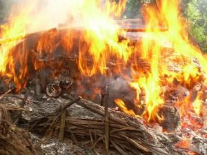 Destruction de puits de charbon illégal