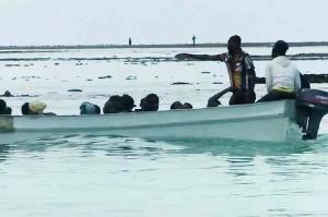 Nouveau naufrage de kwassa au large des Badamiers