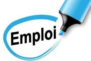 Enquête «emploi 2019» du 4 mars au 6 juillet 2019