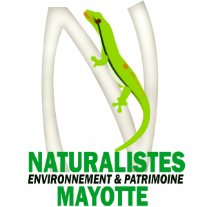 Conférence de presse : l'Association des Naturalistes de Mayotte
