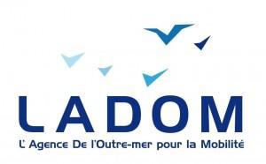 Ladom publie son rapport d'activité de l'année 2017