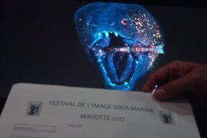 Les lauréats 2017 du concours de l'image sous-marine connus dans un mois