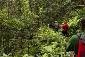 Sport Nature : une étude sur la randonnée à Mayotte lancée par le Conseil Départemental