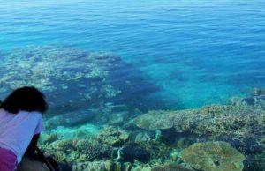Report de la deuxième édition du Festival du Lagon de Mayotte