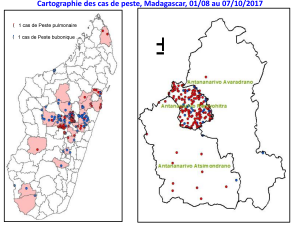 Point de situation sur la peste à Madagascar