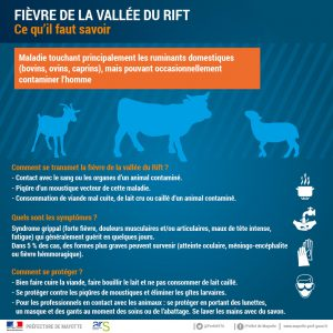 Fièvre de la Vallée du Rift à Mayotte : point de situation au 8 mars