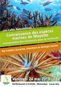 Les Naturaliste de Mayotte organisent leur prochain café sur les espèces marines du lagon
