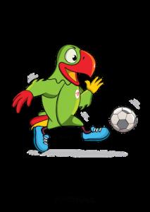 Mayotte l'emporte 2-0 face aux Comores