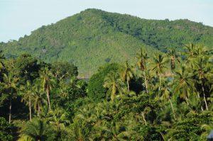 Reconstituer les forets mahoraises pour lutter contre la pénurie d'eau et protéger la biodiversité