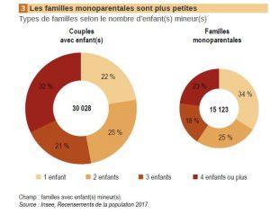 La famille du 101e département français est assimila-ble à celle d'un pays en voie de développement