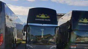 bus service public