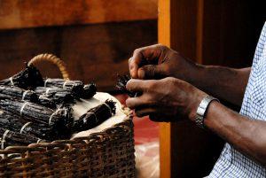Mayotte en ordre de marche pour participer au salon de l'agriculture à Paris