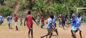 Le CRIB informe les associations sportives et entreprises d'activités sportives de ne plus accueillir de public