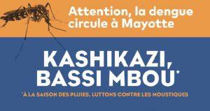 Epidémie de dengue à Mayotte : le nombre de cas continue d'augmenter