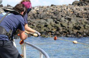 Le Parc Naturel Marin de Mayotte annonce son retour sur le lagon