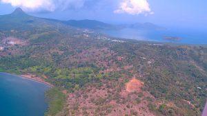 La déforestation, un enjeu majeur pour la préservation de Mayotte et de sa biodiversité