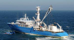 Des enseignes de la  grande distribution veulent des quotas de pêche sur zone ?