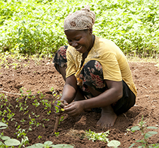 Restitution des travaux  des États Généraux de l'Agriculture