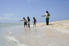 L'INSEE reporte le recensement en France, sauf à Mayotte