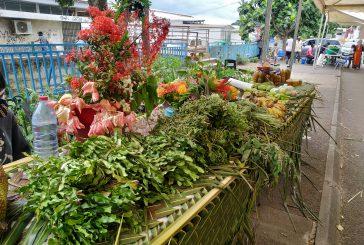 La foire agricole de Kawéni porte ses fruits