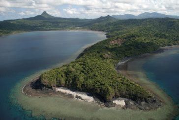 Les activités des Naturalistes de Mayotte en janvier 2021