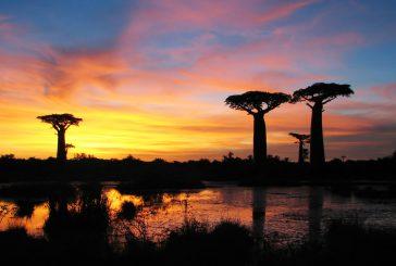 Les Jeux des îles se dérouleront à Madagascar