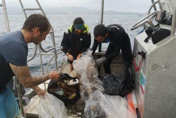 L'îlot Mbouzi nettoyé par les Naturalistes de Mayotte