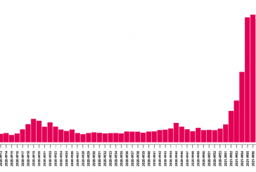 La courbe du Covid à Mayotte continue de baisser