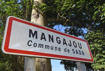 Les Sadois ne veulent plus du pont de Mangajou… Ni de l'immigration