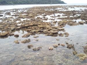 La grande marée est au rendez-vous (3 photos)