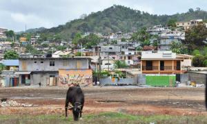 Le Fond régional d'Aménagement du Foncier et de l'Urbanisme a enfin vu le jour à Mayotte