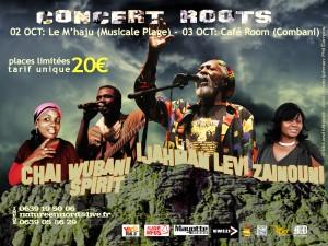 Le dinosaure du Roots Reggae Jamaïcan en concerts à Mayotte