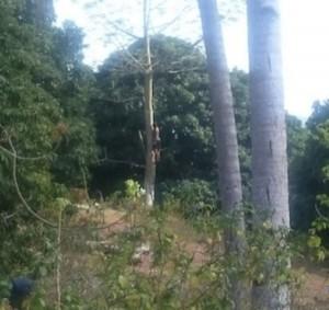 Sombre découverte en forêt de Ouangani
