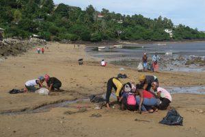 La plage de Sada nettoyée par 2 classes de lycéens