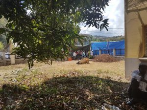 École primaire de Mliha : la famille du défunt s'explique