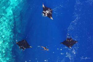 Une série de reportages sur le lagon de Mayotte