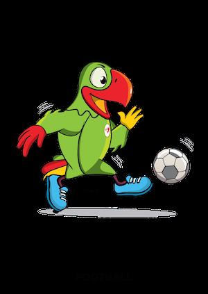 Les footballeurs mahorais repartent avec la médaille de bronze