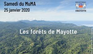 Samedi du MuMa : les forêts de Mayotte, un patrimoine naturel présenté dans une conférence