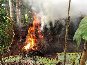 Protéger l'environnement et la biodiversité de Mayotte est une lutte de tous les instants