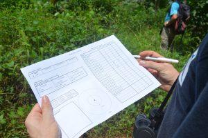 Le GEPOMAY cherche des bénévoles pour observer les oiseaux de Mayotte